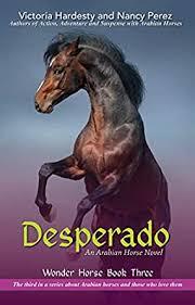 desperado book 3