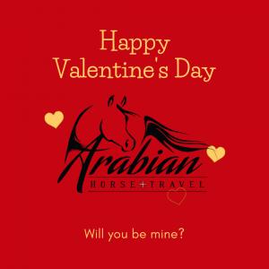 Valentines Day Canva