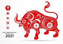 chinese ny ox 2021